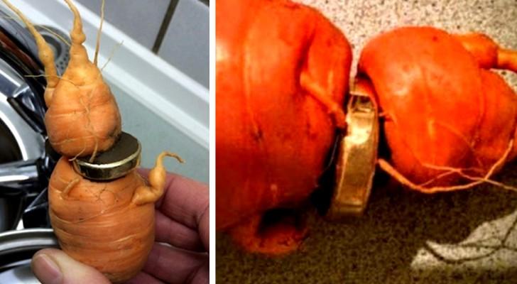 Een oudere man vindt zijn trouwring na 3 jaar om een wortel: zijn tuin heeft hem de kostbaarste vrucht teruggegeven