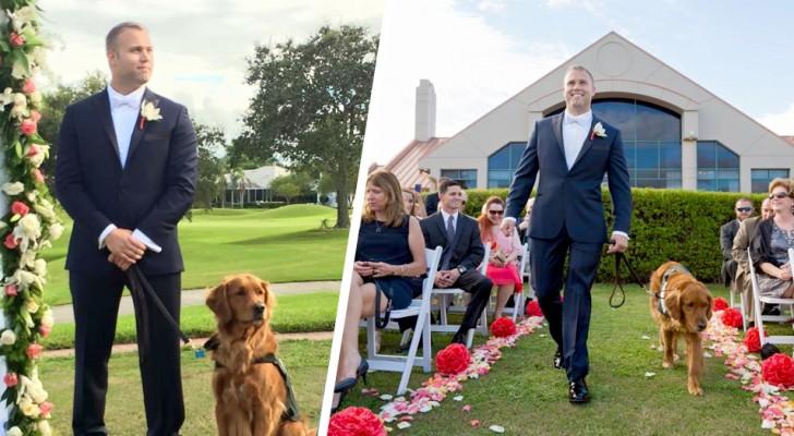 Il cane da terapia fa da testimone al matrimonio del suo padrone: non poteva mancare in un giorno così speciale