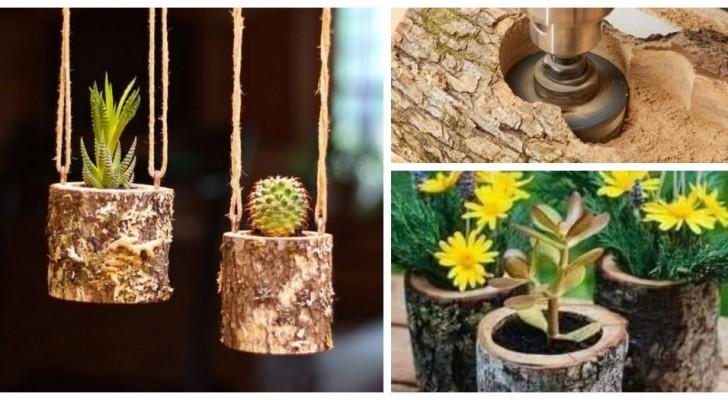 Transformez de simples troncs en de fantastiques pots : les meilleures idées pour des jardinières au look naturel