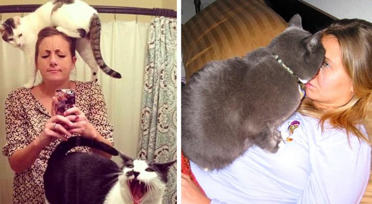 Non avrai più un momento di privacy!: 15 gatti invadenti che hanno una percezione tutta loro degli spazi