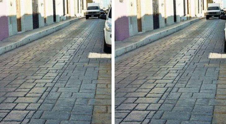 Zijn het twee verschillende foto's of dezelfde? Test jezelf met deze optische illusie