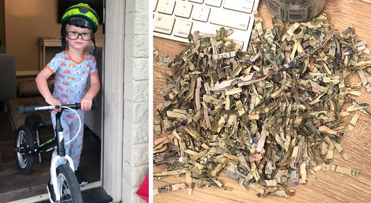 2-Jähriger findet Briefumschlag im Haus und schreddert über 1.000 Dollar im Schredder