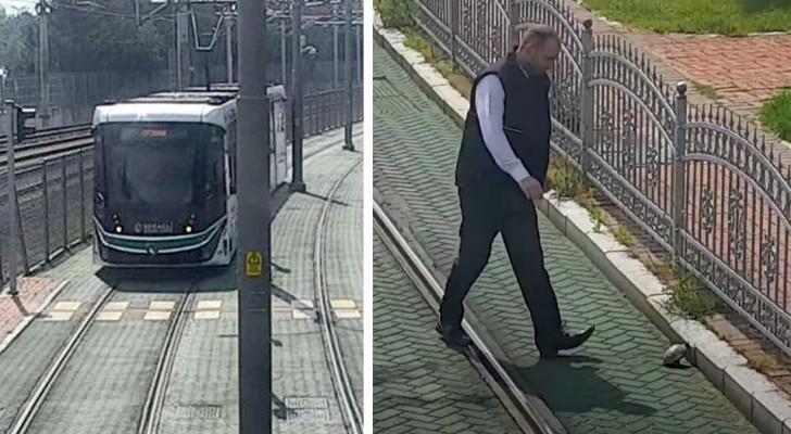 Un conducteur de tramway arrête le véhicule pour sauver une tortue en difficulté : elle était coincée entre les rails