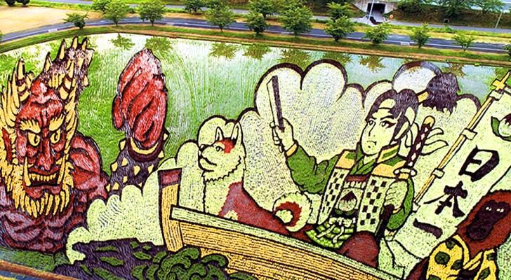 In questo villaggio giapponese gli agricoltori piantano il riso creando delle spettacolari opere d'arte