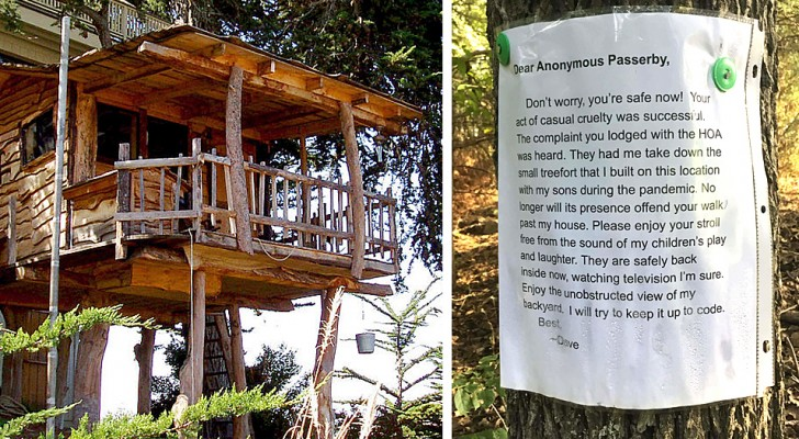 Er baut ein Baumhaus für seine Kinder, doch ein Passant zeigt ihn an: Er muss es abreißen