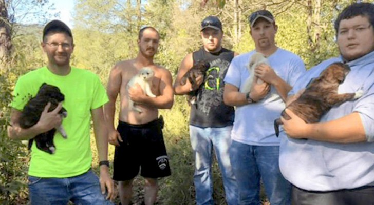 They wanted to celebrate a bachelor party in the woods but then they end up saving a dog and her 7 puppies