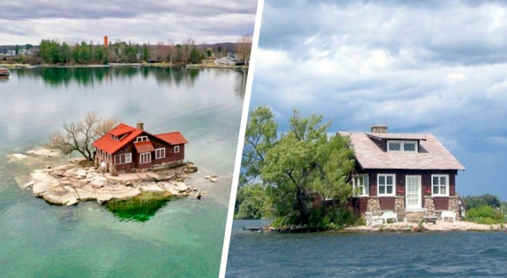 This island is so small that it can only accommodate a house and a single tree