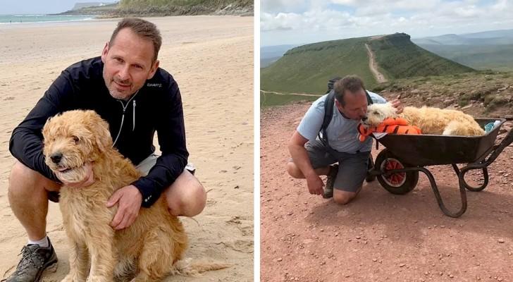 Transporta o cão doente em um carrinho de mão para uma última excursão antes de se despedirem para sempre