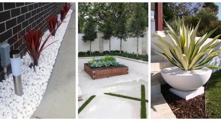 Galets blancs des rivières : découvrez comment les utiliser pour décorer votre jardin avec élégance