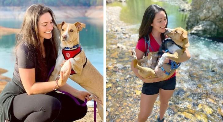 Recorre Estados Unidos en su auto y en compañía del perro que rescató de la carretera: son inseparables