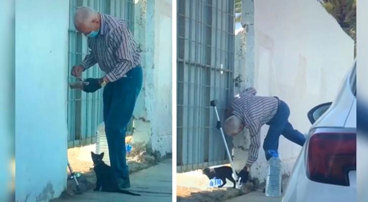 Un vieil homme nourrit chaque jour un chaton de rue en difficulté : la vidéo devient virale