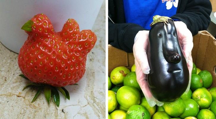 Non è come sembra: 15 volte in cui frutta e verdura assomigliano ad altro