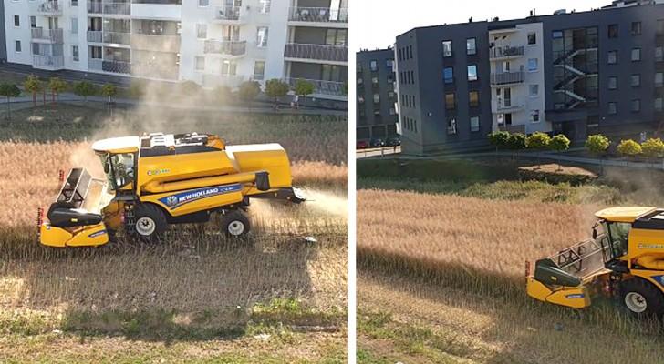 Cet agriculteur refuse de vendre ses champs : il les cultive désormais dans son coin de vert au milieu des immeubles