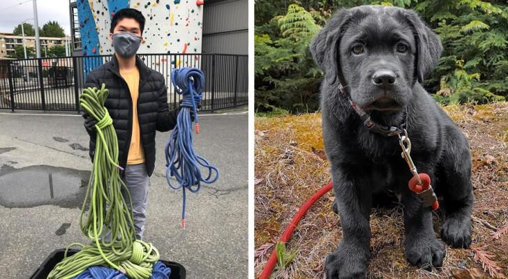 Este cara entusiasta de escalada recicla cordas desgastadas e as transforma em coleiras de cachorro