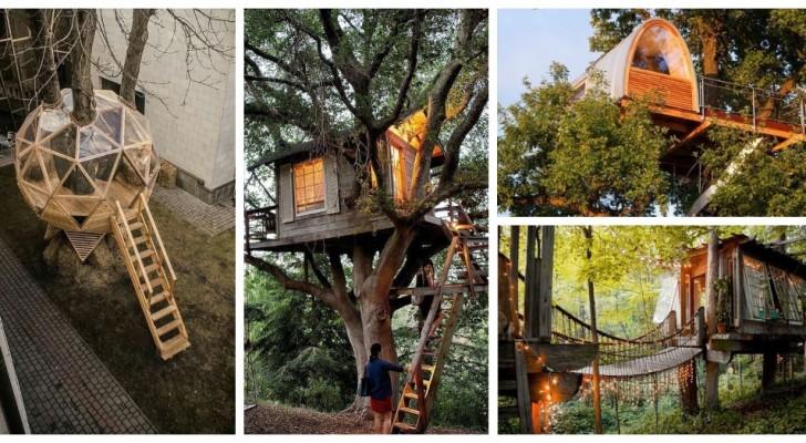 Casa sull'albero: lasciati ispirare da queste idee mozzafiato per grandi e piccoli