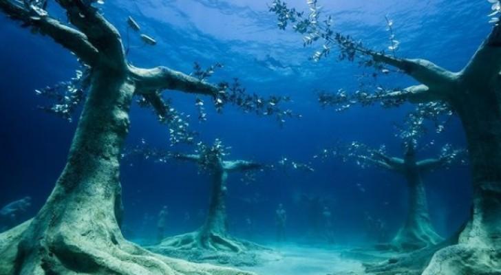 Un artista realizza il primo museo subacqueo del Mediterraneo: