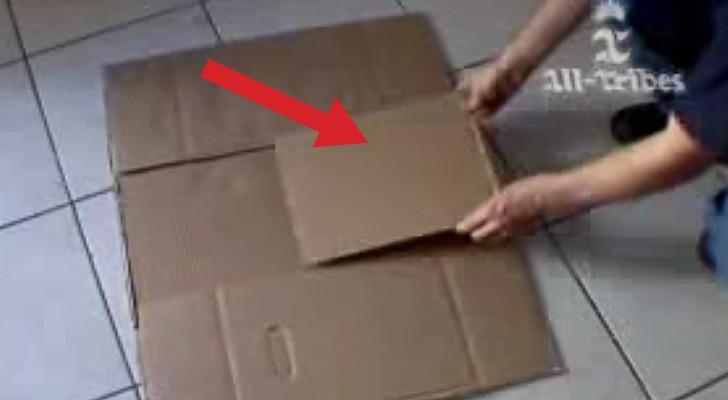 Het lijkt alsof hij dozen in het wilde weg gebruikt, maar het eind resultaat is BRILJANT!