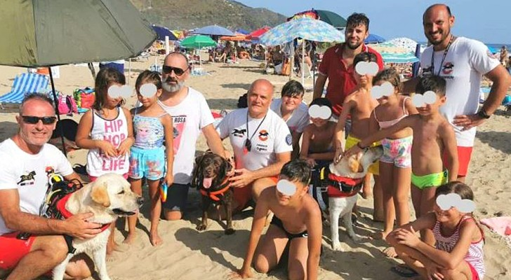 Tre eroici cani bagnini salvano 14 persone che erano state travolte dalle onde