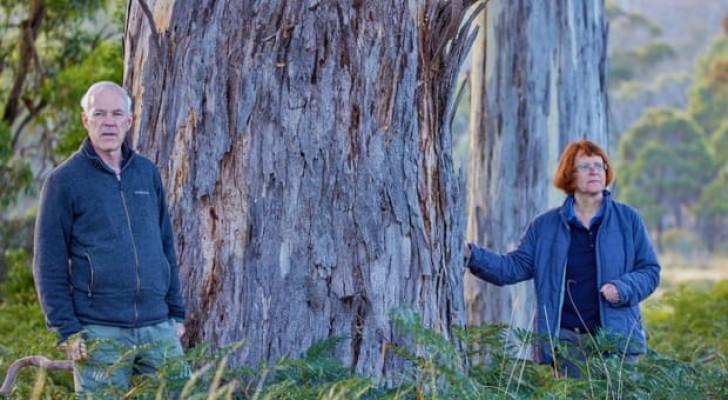 Coppia eredita un milione e mezzo di dollari e li spende per salvare una rara riserva naturale
