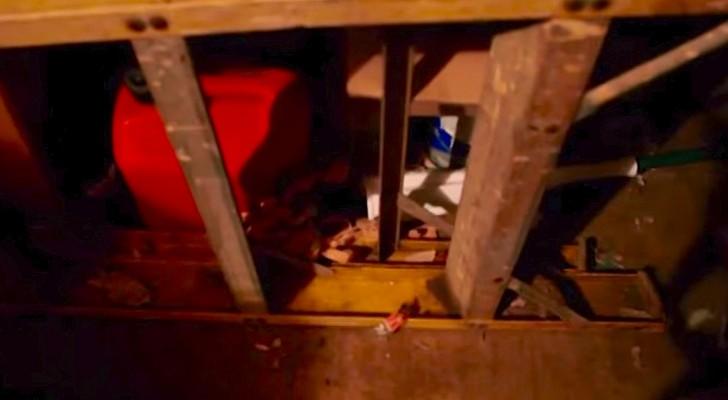Gli inquilini lasciano casa piena di rifiuti: la scoperta del proprietario è inquietante
