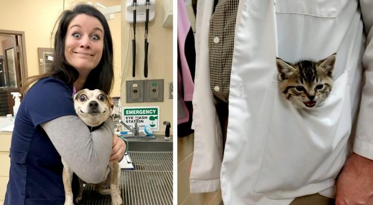 15 veterinarios que no pudieron evitar mostrarle al mundo a sus pacientes más tiernos