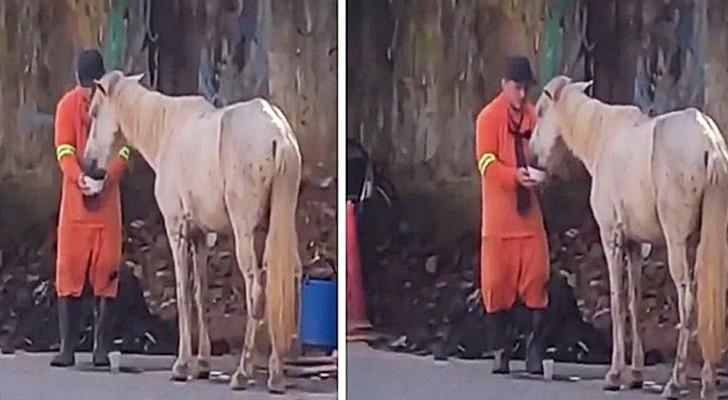 Un barrendero interrumpe su trabajo para darle de beber a un caballo sediento: un gesto muy noble