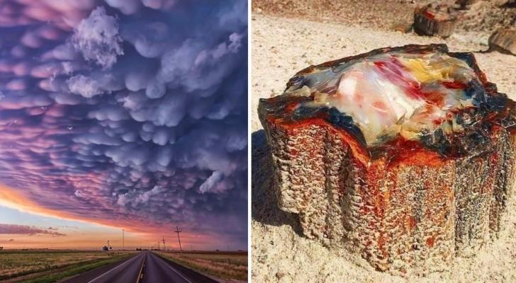 15 keer dat de natuur ons onbewust ongelooflijke kunstwerken heeft gegeven