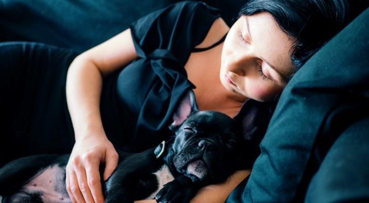 Les femmes dorment mieux à côté d'un chien qu'à côté d'un homme : l'étude