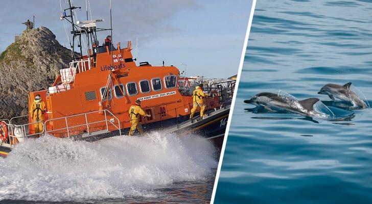Nuotatore disperso nelle acque irlandesi da 12 ore viene ritrovato grazie ad un branco di delfini