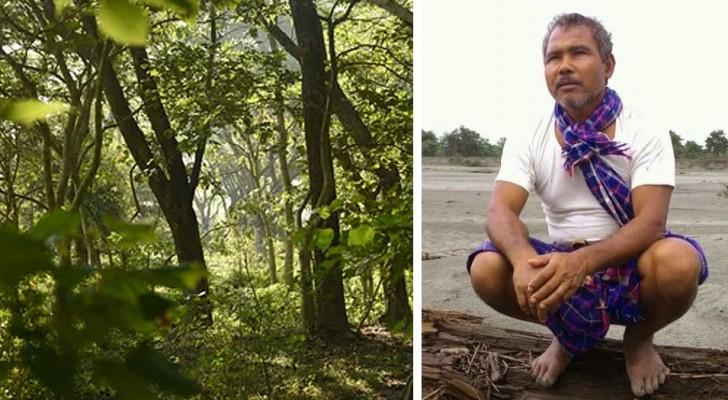 Il plante un arbre par jour pendant 40 ans : aujourd'hui, il a donné vie à une forêt luxuriante de 550 hectares