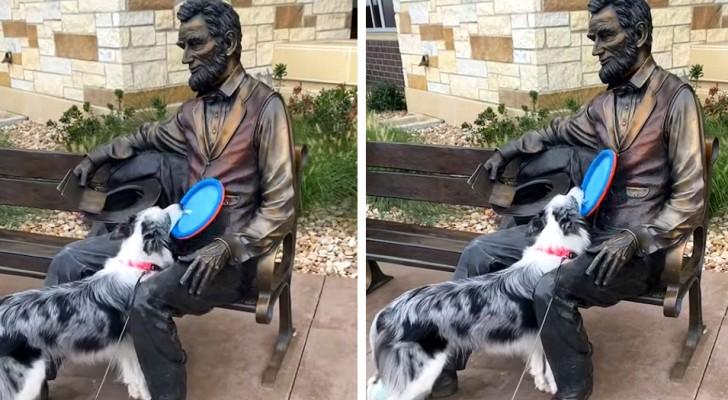 Questo simpatico Border Collie insiste per giocare a frisbee con una statua