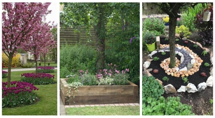 Parterres de fleurs au pied des arbres : de nombreuses idées irrésistibles pour embellir le jardin
