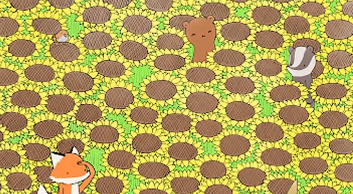 Kun jij de vlinder in het zonnebloemveld vinden? Test jezelf met een bijzondere visuele puzzel