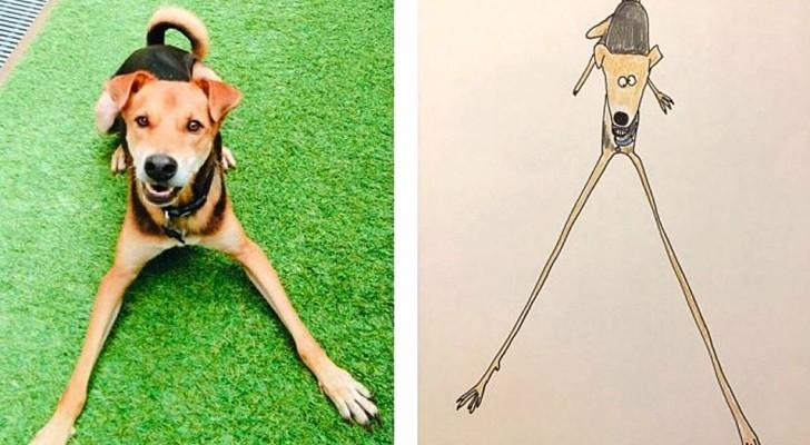 Cet artiste réalise des dessins d'animaux si bizarres qu'ils en sont presque convaincants