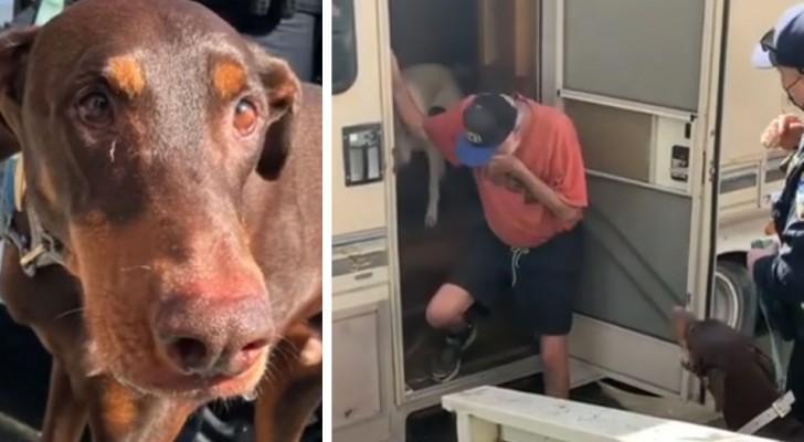 Un uomo scoppia in lacrime quando un poliziotto gli riporta il suo cane smarrito: una scena commovente