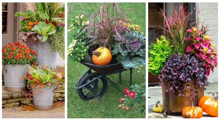 Giardino d'autunno: usa piante e ortaggi per decorare l'esterno di casa con gli splendidi colori della stagione