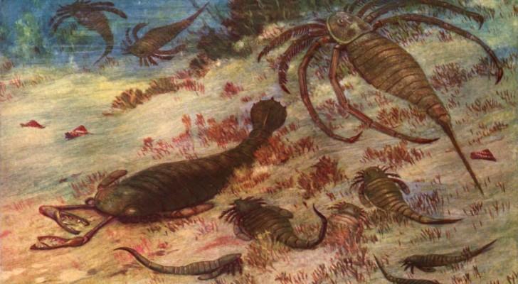 Überreste eines riesigen Seeskorpions in China gefunden: Er war das gefürchtetste Raubtier des Meeres