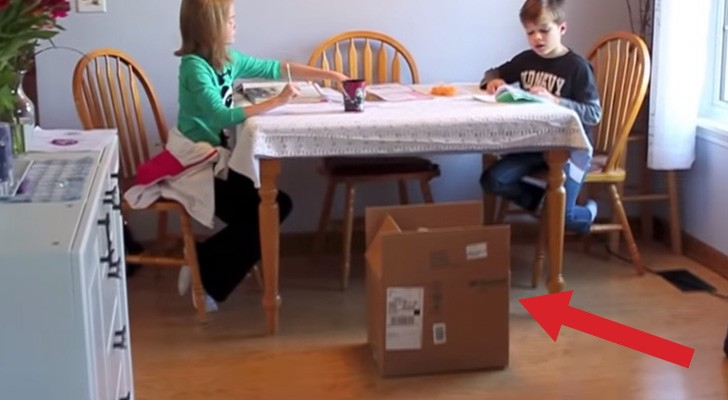 Le papa met un carton mystérieux à côté de la table: regardez ce qu'il va se produire