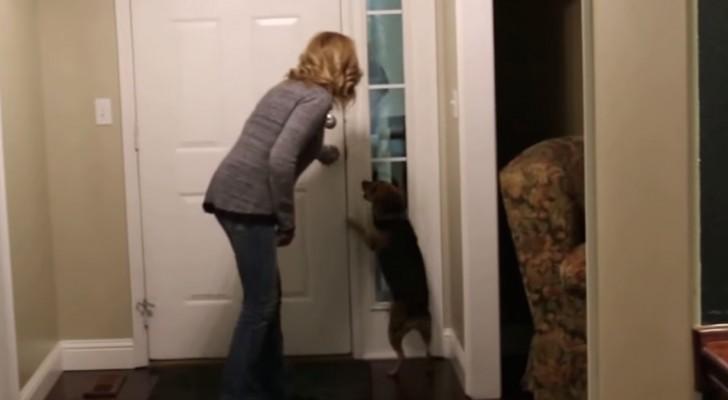 Torna a casa dopo 2 anni: mai vista un'accoglienza come questa.