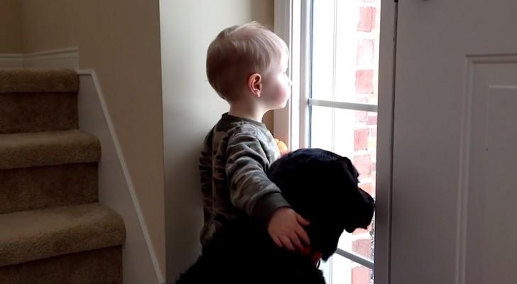 Ce chien attend sa vraie famille, mais ce petit enfant le console... Adorable!