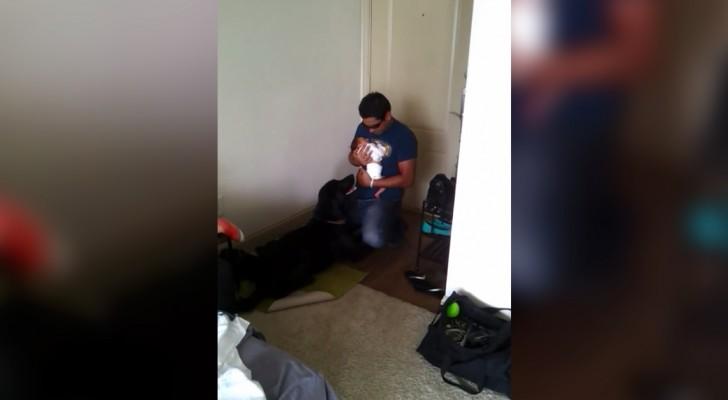 Dieser Papa zeigt euch, wie man ein Neugeborenes einem Hund vorstellt