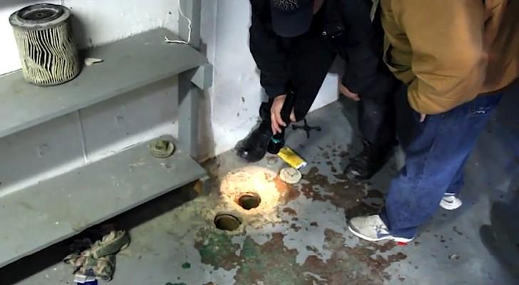 Un chiot est bloqué à l'intérieur d'un tube... Leur intervention lui sauvera la vie