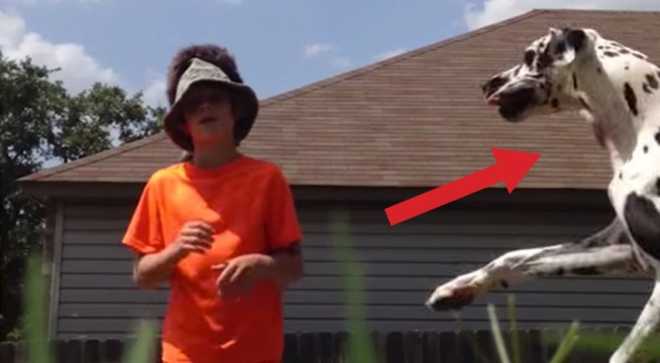 A boy is talking in front of the camera, but his careless friend steals the show !
