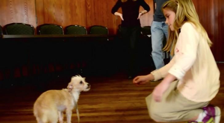 Elle tend la main à ce chien abandonné et terrorisé : regardez sa réaction...