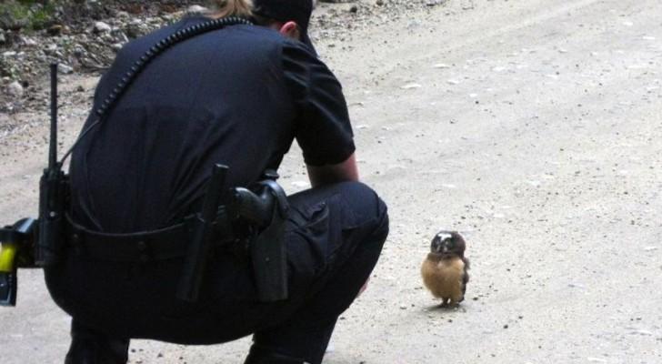 Une policière fait une rencontre qui va changer le cours de la journée... WOW!!