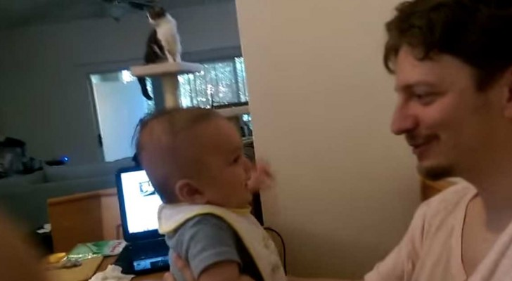 Dad tells him that him loves him ... the response of this 3 month old baby is amazing !