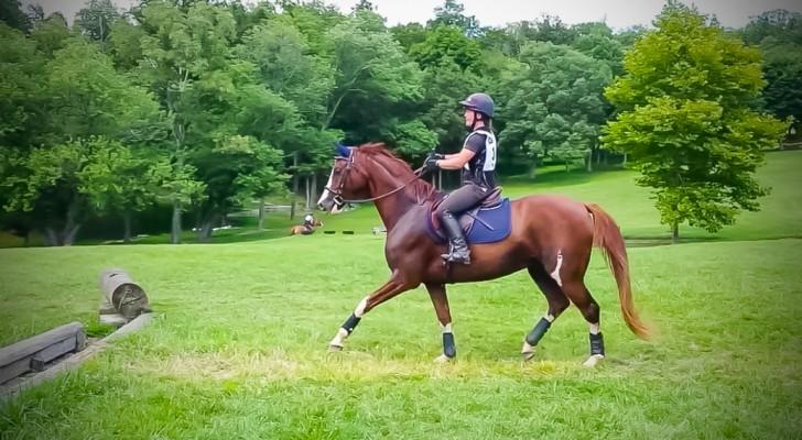 All'inizio il cavallo non riesce a superare il fossato, ma quando trova il coraggio... Wow!