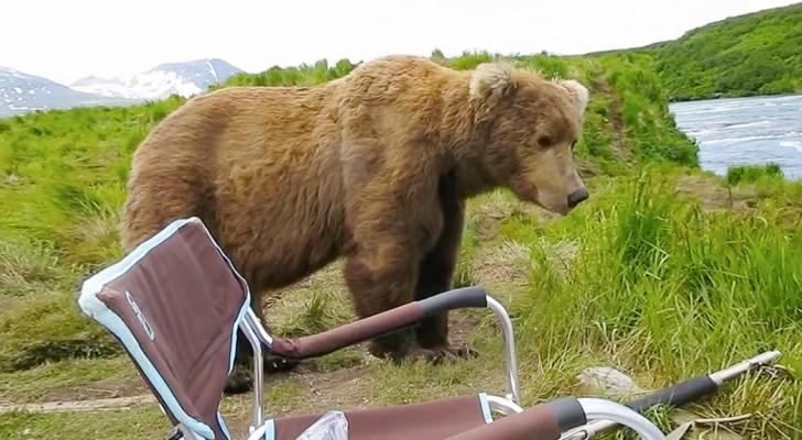 Ze zijn lekker aan het eten op de camping, totdat er een bijzonder IEMAND aanschuift