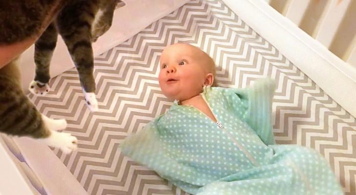 mama kommt mit der katze im arm ins zimmer die reaktion des babys wundervoll. Black Bedroom Furniture Sets. Home Design Ideas