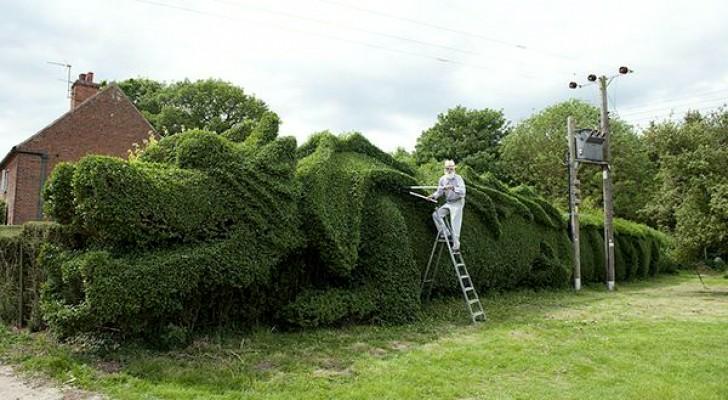 Con 13 anni di lavoro ininterrotto un uomo trasforma una siepe in un enorme dragone
